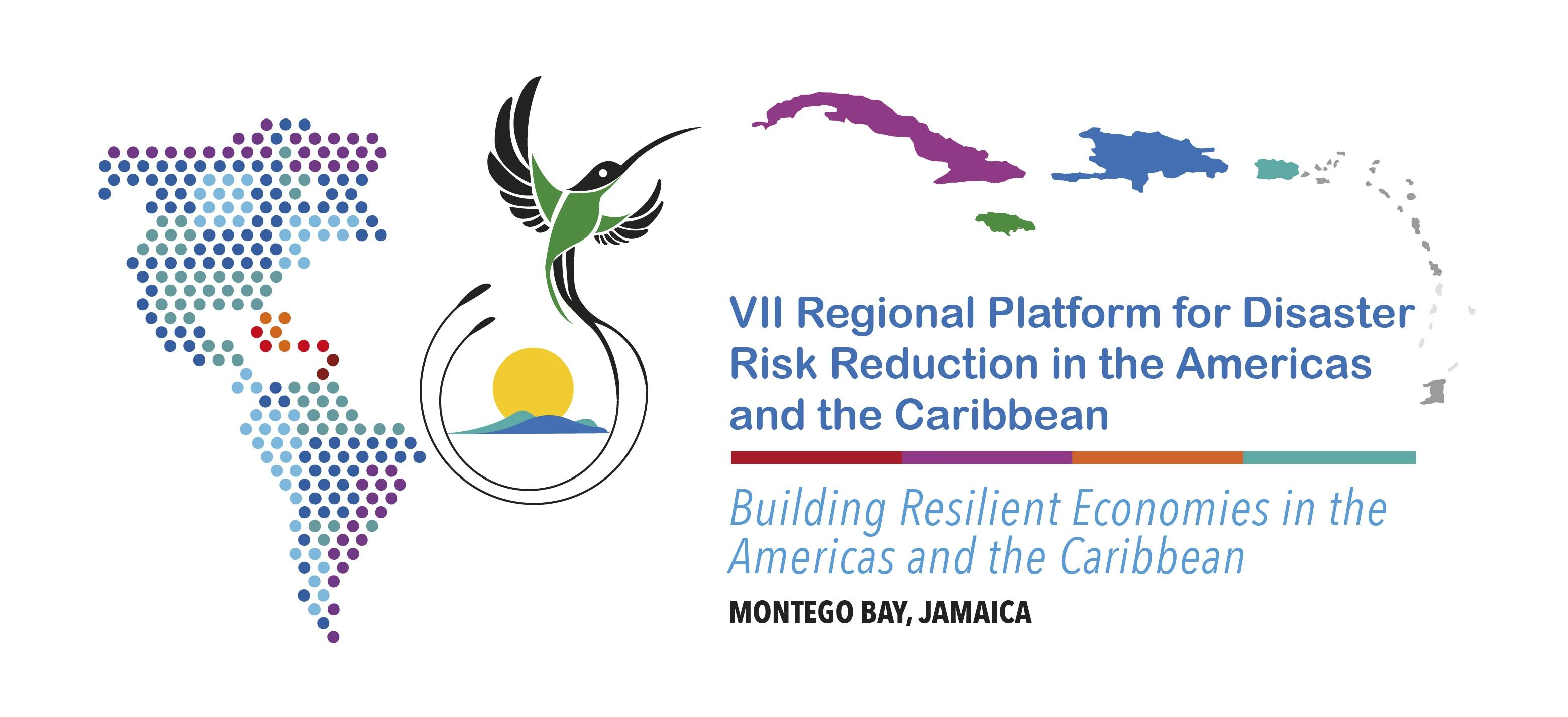 VII Regional Platform will be held in 2021